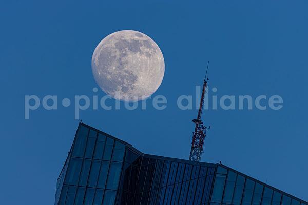 Der Mond geht auf über der EZB (25.02.2021)