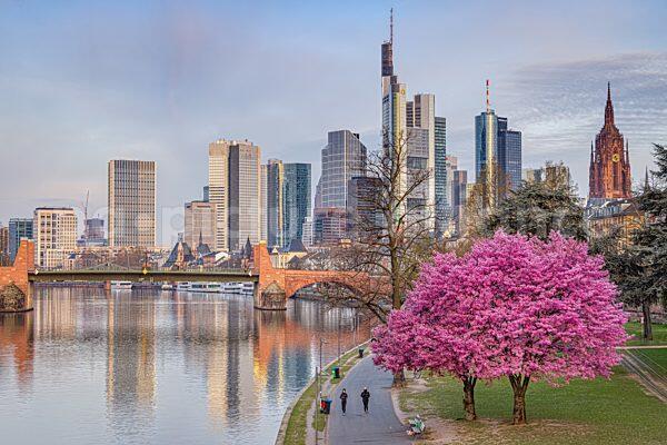 Frankfurt am Main im Frühling (09.04.2021)