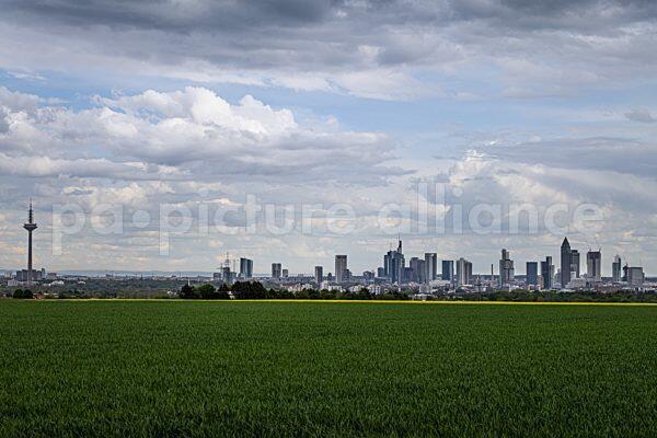 Die Frankfurter Skyline (20.05.2021)