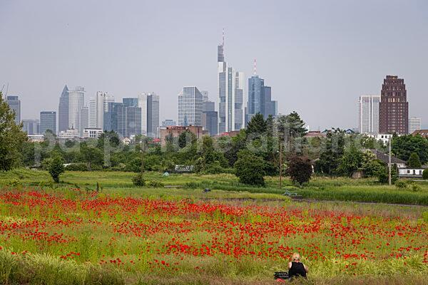 Frankfurt am Mohn (08.06.2021)