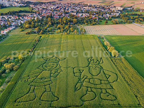 Ein Maislabyrinth bei Frankfurt am Main (05.09.2021)