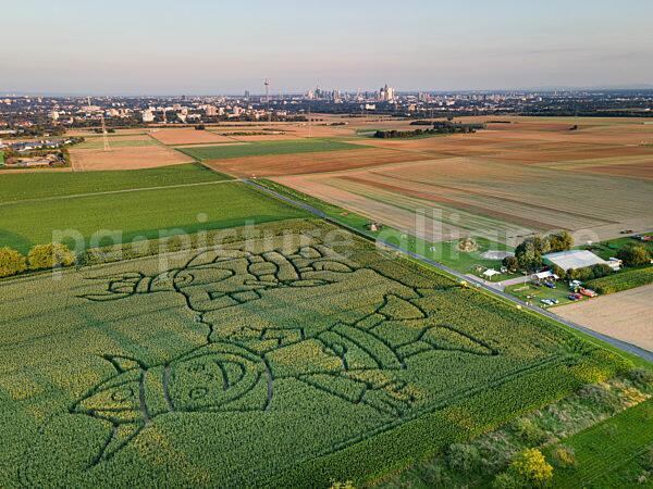 Die Wikinger stehen vor Frankfurt (05.09.2021)