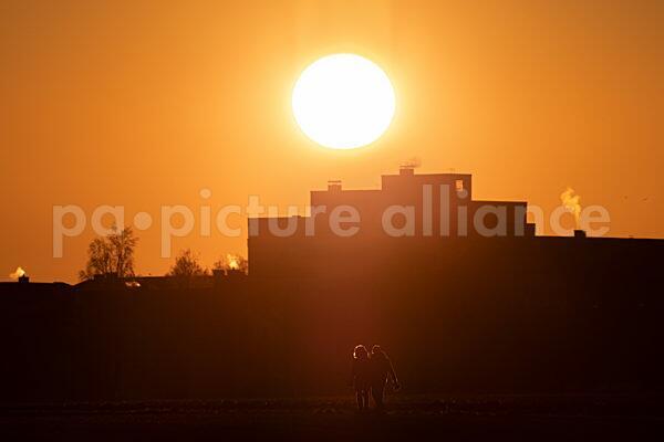 Spaziergänger genießen den Sonnenuntergang auf den Feldwegen zwischen Frankfurt und Steinbach (10.01.2021)